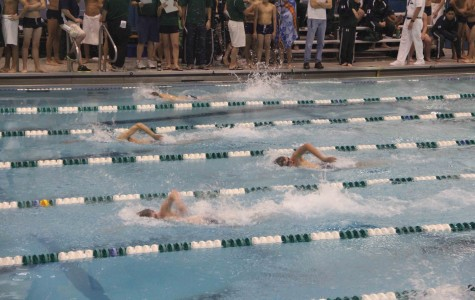 Boys swimming launches toward another title