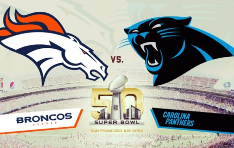 Panthers and Broncos set to face off in Super Bowl