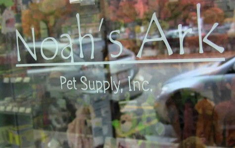 Petco competes with family-owned pet store