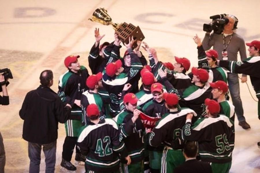 Boys+hockey+captures+state+title