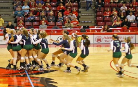 Girls volleyball places third at state