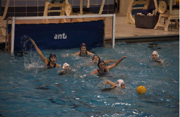 Girls Water Polo goes to State
