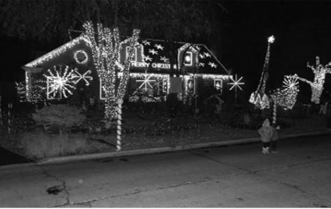 Tingle dazzles with Christmas lights