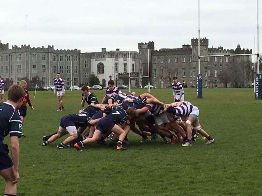 Rugby thrives in Ireland