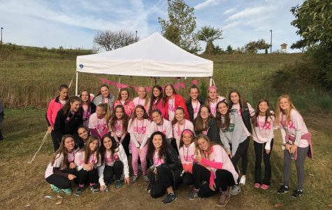 Making strides for cancer research