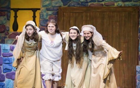 """Once Upon a Mattress"" gives refreshing twist on classic fairy tale"