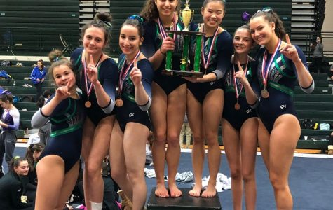 Trevian Gymnasts earn top prize at GBN