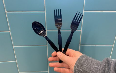 Concern grows over environmental impact of plastic utensils