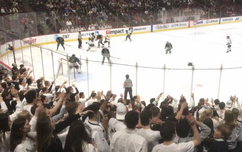 Fenwick's comeback leads to Girls Hockey loss at UC