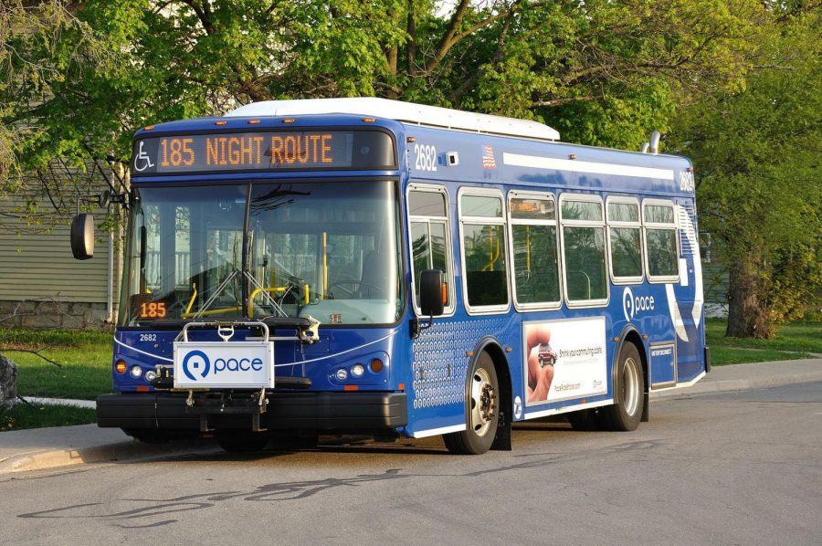 Many students take the Pace bus to and from school every day