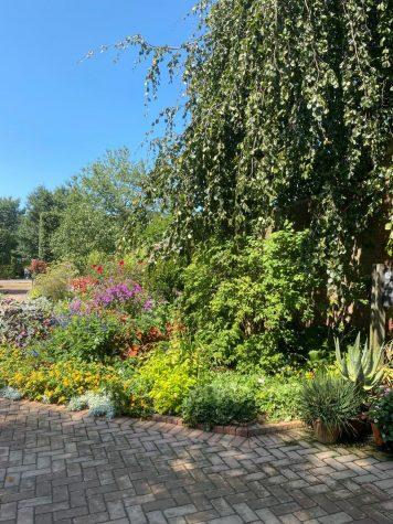 IGSS took a trip to the Botanic Gardens on Aug. 30